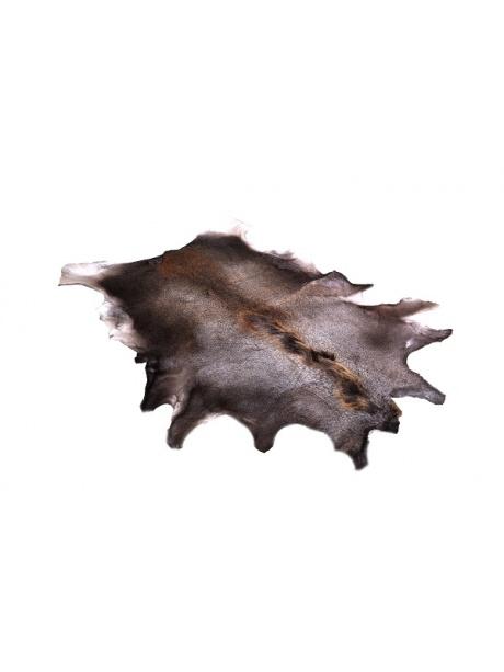 kůže z losa
