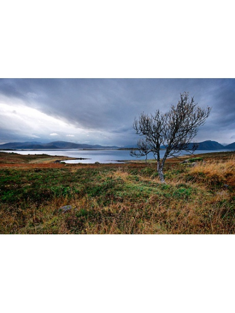 Krajina severního Norska